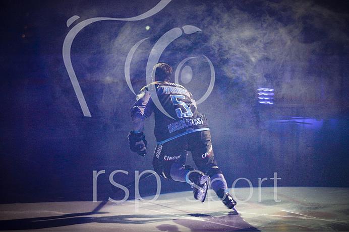 DEL - Eishockey - ERC Ingolstadt - Düsseldorfer EG - Saison 2016/2017 - Spieltag: 50