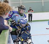 Skaterhockey, Sch